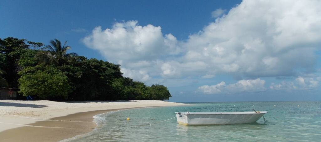 Turtle Island, insula broaștelor țestoase